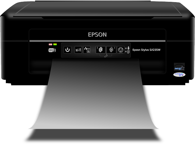 Epson l380 blank page problem